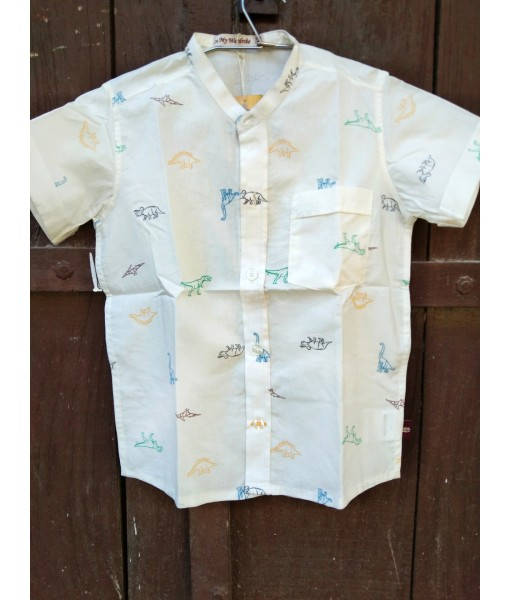 Kid's Shirt Dinosaur Print